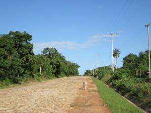 Paraguayan Blue