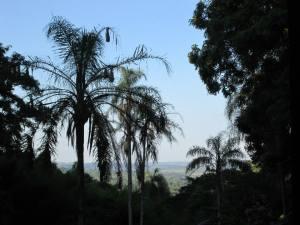 Paraguayan View